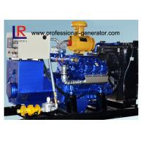 Quality Water Cooled 100kw Biogas Generator with CE , Electric Control Ignition  V Type for sale