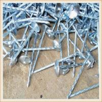 common nails,2.5' 500mm Common Wire Nails Q195 Q235 Needle Point Smooth Shank Polished