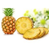 Quality Natural Pineapple Extract/Bromelain enzyme for sale