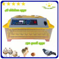 China Christmas promotion price $39 full automatic mini chicken egg incubator of YZ8-48 on sale