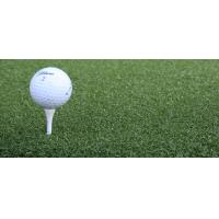 Quality [Nylon Perfect] artificial grass for golf for sale