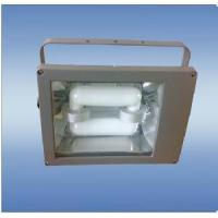 Quality Induction Lamp Lighting Fixture for sale