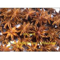 Quality Organic Aniseed for sale