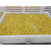 Quality Food Grade Plastic Drying Trays Pharmaceutical Drying For Softgel Capsules and paintball for sale