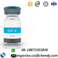 Quality Gdf-8 Muscle Gaining Human Growth Peptide Myostatin 1mg/vial White Powder for sale