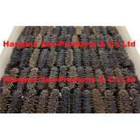 Quality Dried Sea Cucumbers (Spiky) for sale