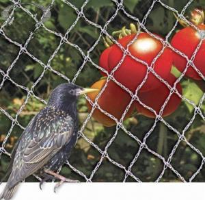 China PE Woven Anti Bird Net , Bird Proof Netting 100% New HDPE Material on sale