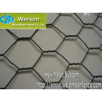 Quality Werson Chicken Wire,Poutry Netting,Hexagonal Wire Netting for sale