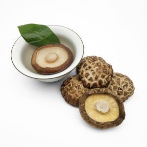 China Dried Tea Flower Shiitake Mushrooms on sale
