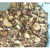 China Chinese Fir Wood or twig Cunninghamia lanceolata Lamb Hook herbal medicine Shan mu on sale