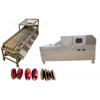 Quality GELGOOG Industrial Dates Pitting Machine Manual Sorting And Pitting Process Line for sale
