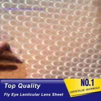 China PLASTIC LENTICULAR pp lenticular 3d fly eye sheets imported from Korea on sale
