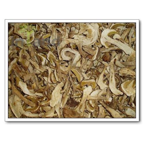 Buy Porcini,Porcini mushroom,Boletus Edulis,mushrooms at wholesale prices