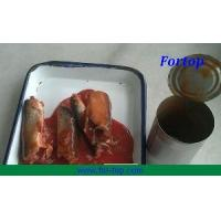 Quality Canned Mackerel in Hot Sauce for sale