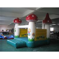China 3 * 3m Inflatable Jumping Castle , Inflatable Water Bounce House Abrasion Resistance on sale