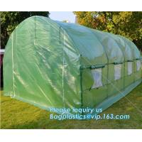 Quality Strawberry Planting Green House,200 micron UV plastic film for agriculture green house,High safety greenhouse for plants for sale