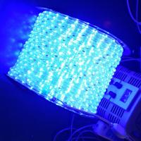 Quality led light rope for sale