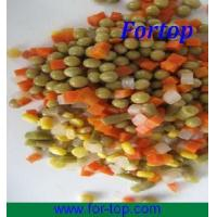 Quality Canned Mixed Vegetables in Brine (CV-002) for sale