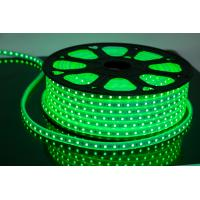 China Waterproof Neon LED Flex Strip Rope Light DC12 / 24V / 120V / 110V / 220V 168LEDs/m on sale