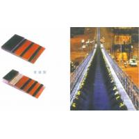 Quality Polyester Conveyor Belt for sale