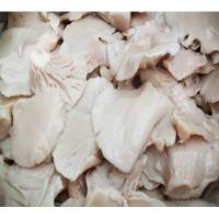 Quality Factory Price China NEW CROP Canned Oyster Mushroom Whole in Brine for sale