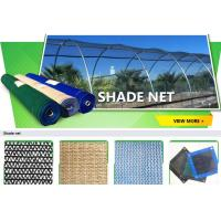China Anti insect net, anti bug net, anti aphid net, mesh anti insect net,shade sail,shade net, anti hail net,protection net on sale