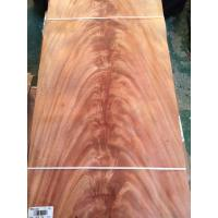 Quality Mahogany, African Khaya Crotch Wood Veneer for sale