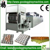Quality Recycled waste paper egg tray machine for sale