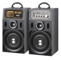 Lightweight Portable Active PA Speaker With Tweeter Light / Portable Stereo System