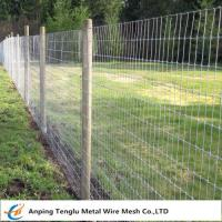 China Galvanized Kraal Mesh Fence/Grasslanf Fence|Wire Fencing for Pasturing Area on sale