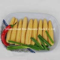 China Canned Baby Corn on sale