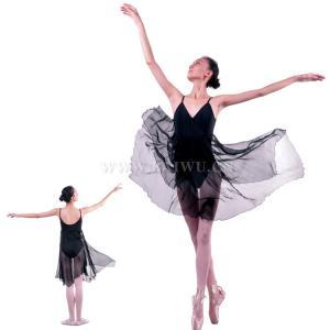 Adult Graceful Ballet Dance Dress