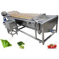Quality Leaf Vegetable Washing Machine Fruit And Vegetable Processing Equipment Without Damanage for sale