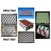 China Aluminum Apple Egg Tray Mold Pulping Molding Silvery White Customized on sale
