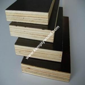 Phenolic film faced plywood board price/ structural plywood/ film faced shuttering plywood