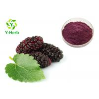 China Mulberry Fruit Powdered Fruit Juice Concentrate Bulk Beverage Use on sale