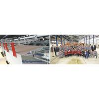 Gypsum Board Production Line Equipment Manufacturer of