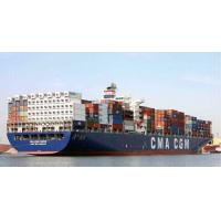 Quality Professional Lcl Ocean Freight Lcl Fcl Shipment China To Bolivia Colombia Ecuador for sale