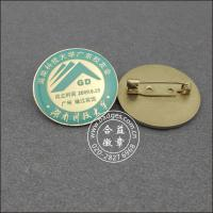Quality School badge hunan tech college badge gilt stamping epoxy XH09 for sale