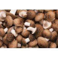Quality Green Dried Mushroom for sale