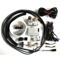 Quality CNG multi point sequential injection system(CNG conversion kits) for sale
