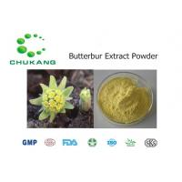Quality Butterbur Extract Powdered Herbal Extracts Petasites Hybridus L Plant Extract for sale
