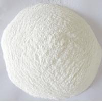China Herbal Extract Powdered Enzyme Amylase Neutral Proteinase Cas No 9000902 on sale
