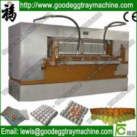 Quality Automatic Chicken Egg Dish Making Machine Quality Egg Tray(FC-ZMG6-48) for sale