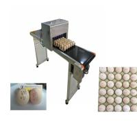 Poultry Agriculture Egg Marking Equipment , Batch Code Printing MachineFor Eggs
