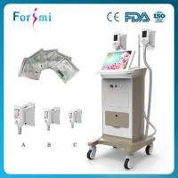 China Cryolipolysis vacuum machine love handles removal freeze liposuction machine for sale on sale