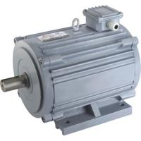 Quality Horizontal motor with CCC (H140TYD-M) for sale