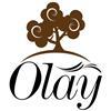 China Hangzhou Olay Furniture Co., Ltd. logo