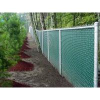 This is a huge forest that has chain link fence with slat.