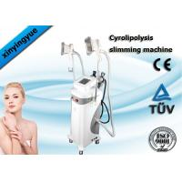 China Multifunction Cryolipolysis Slimming Machine , Fat Freezing Body Slimming Equipment on sale